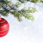 Ornament Hanging On Pine Tree